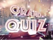 RTS - Grand Quiz du 31.12.2016